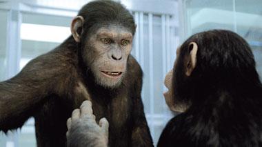 Pro und Contra »Planet der Affen: PRevolution«