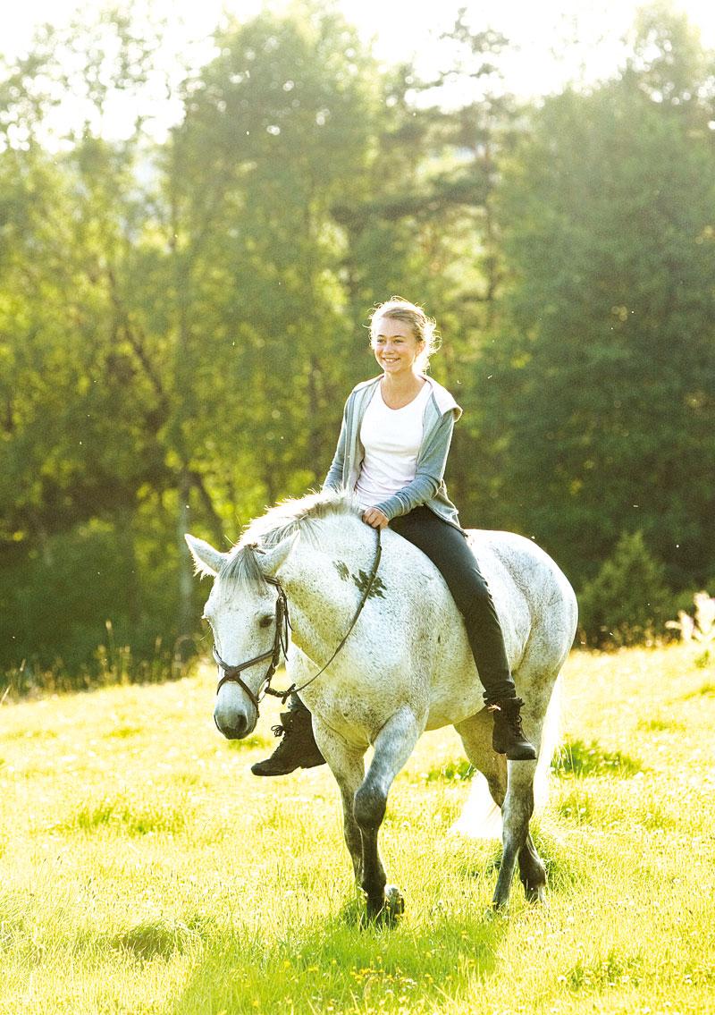 pferde mädchen